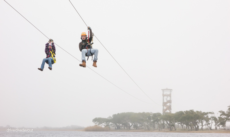 Zip Line over Lake Shelby