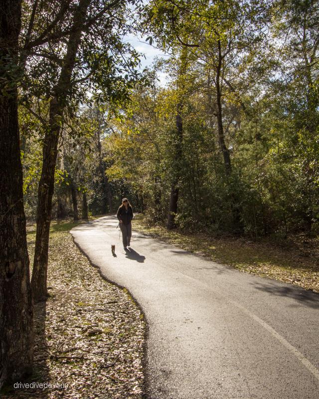 Backcountry Trails walking Gypsy