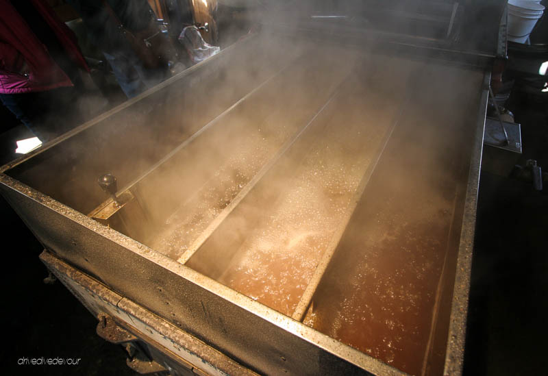 Maple sap boiling