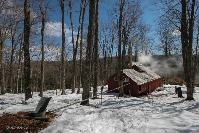 Maple Hill Farm in Vermont