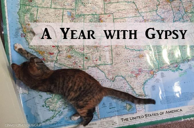 Gypsy with Map